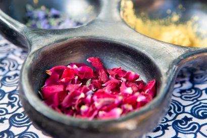 Hidden Bloom skincare by Rowan Tree Wellness in Santa Fe New Mexico